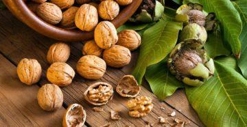 Грецкий орех: польза для здоровья антиоксидантов