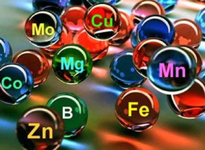 mikroehlementy - Что такое макроэлементы? Их важность и самые лучшие источники