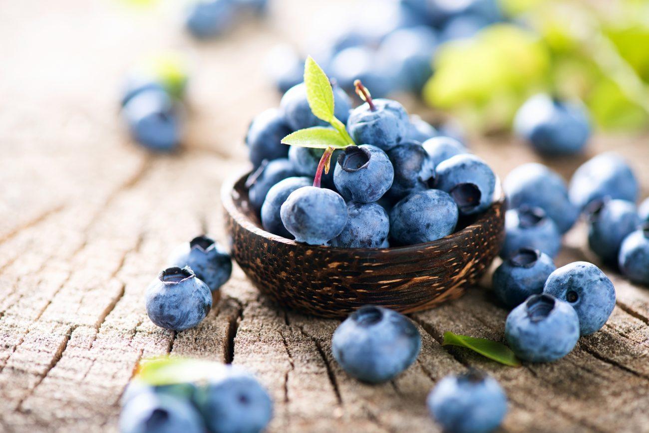 Черника и пробиотики для здоровья кишечника