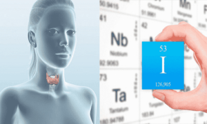 О пользе йода для здоровья щитовидной железы