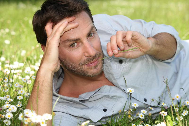 Лучшие травы для мужского здоровья