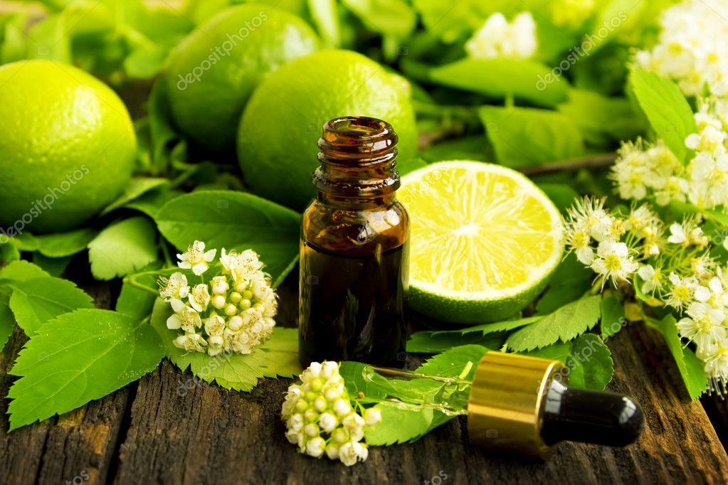 Бергамот и польза эфирного масла Бергамота для снижения веса