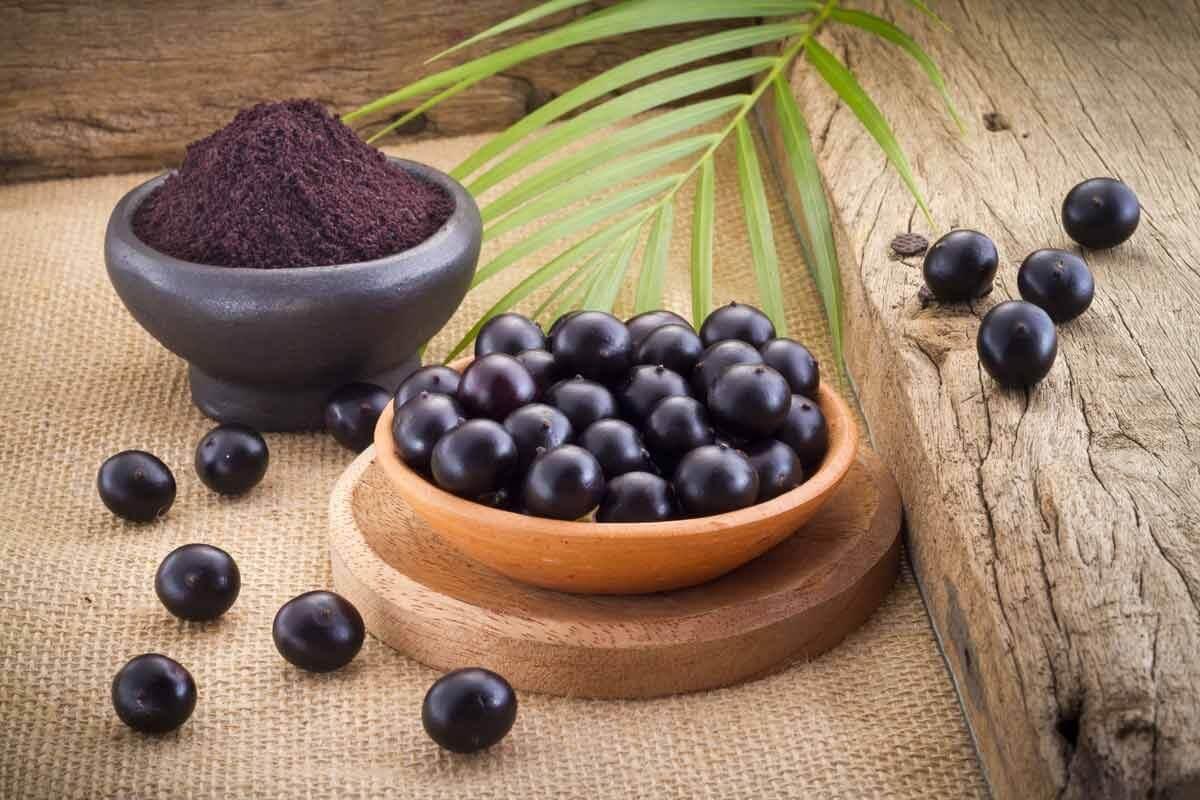 полезные свойства ягоды асаи