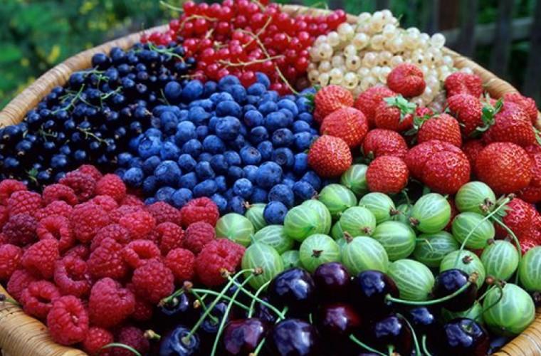 357884 - 7 ягод, которые вы должны есть каждый день