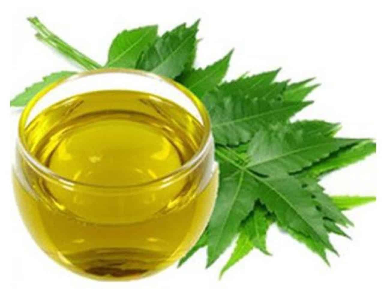 Масло Ним и его удивительная польза для кожи, волос и здоровья.