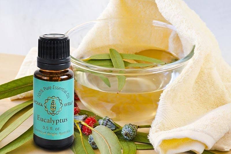 Эвкалиптовое масло для волос-применение и противопоказания