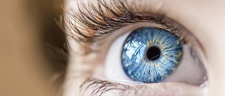 Продукты, полезные для здоровья глаз и улучшения зрения.
